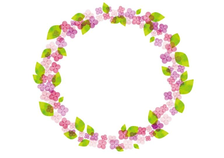あじさい 水彩 ピンク色 円フレーム イラスト 無料