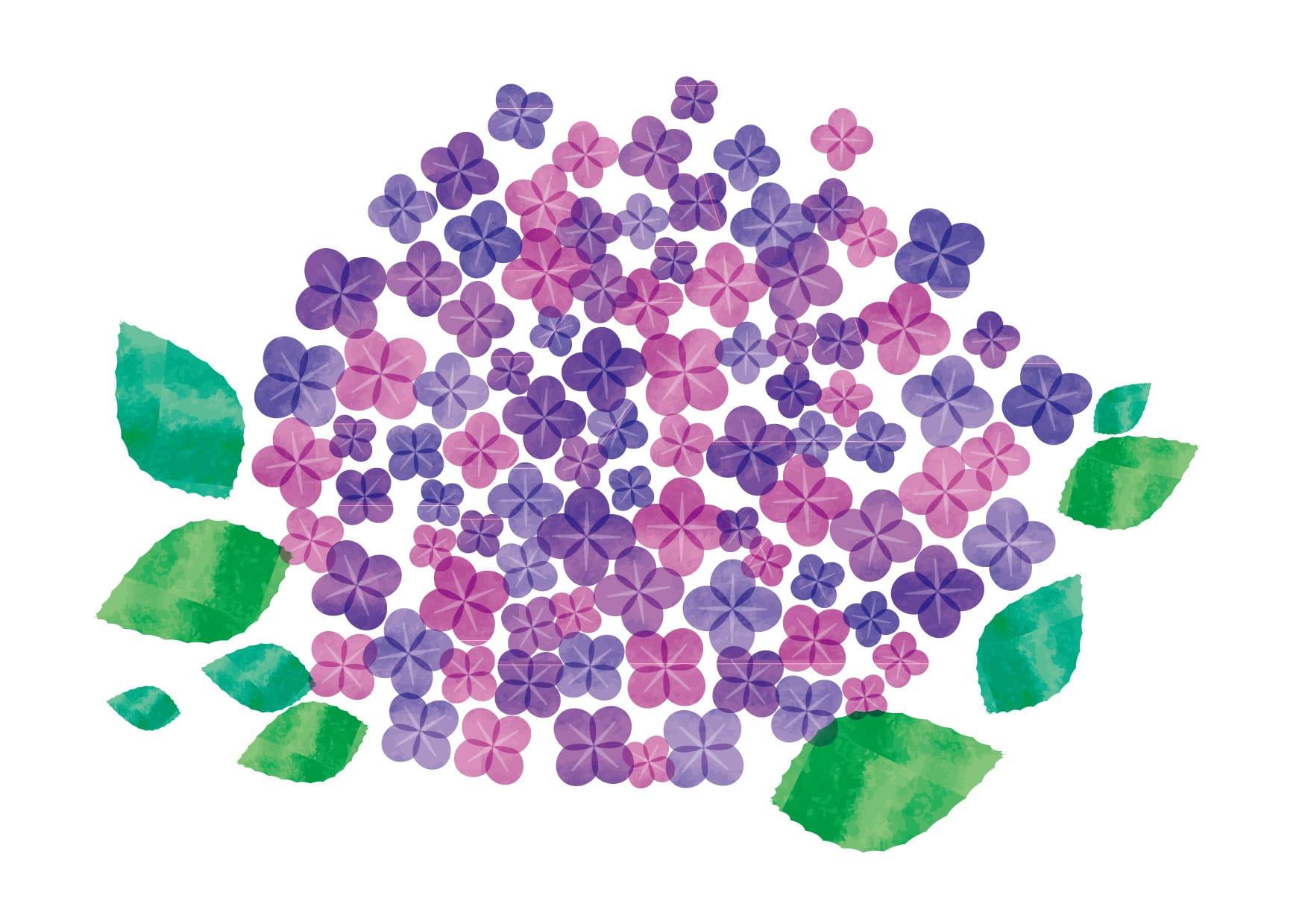 可愛いイラスト無料|あじさい 水彩 花 − free illustration Hydrangea watercolor flower