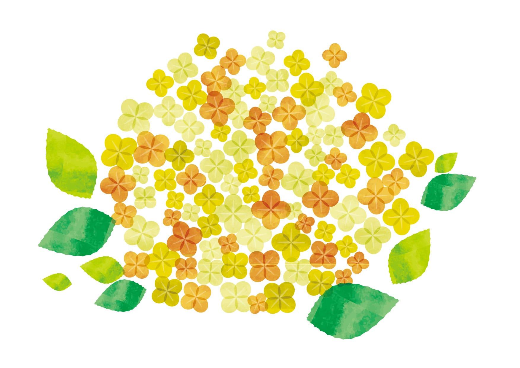 あじさい 水彩 黄色 花 イラスト 無料