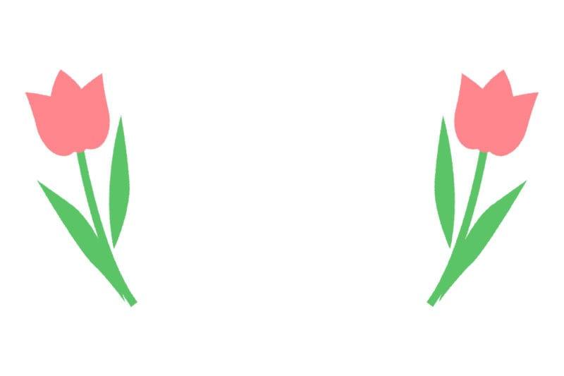 チューリップ ピンク 背景 イラスト 無料