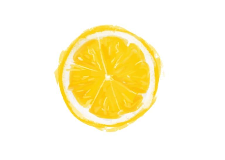 手書き オレンジ 1つ イラスト 無料1