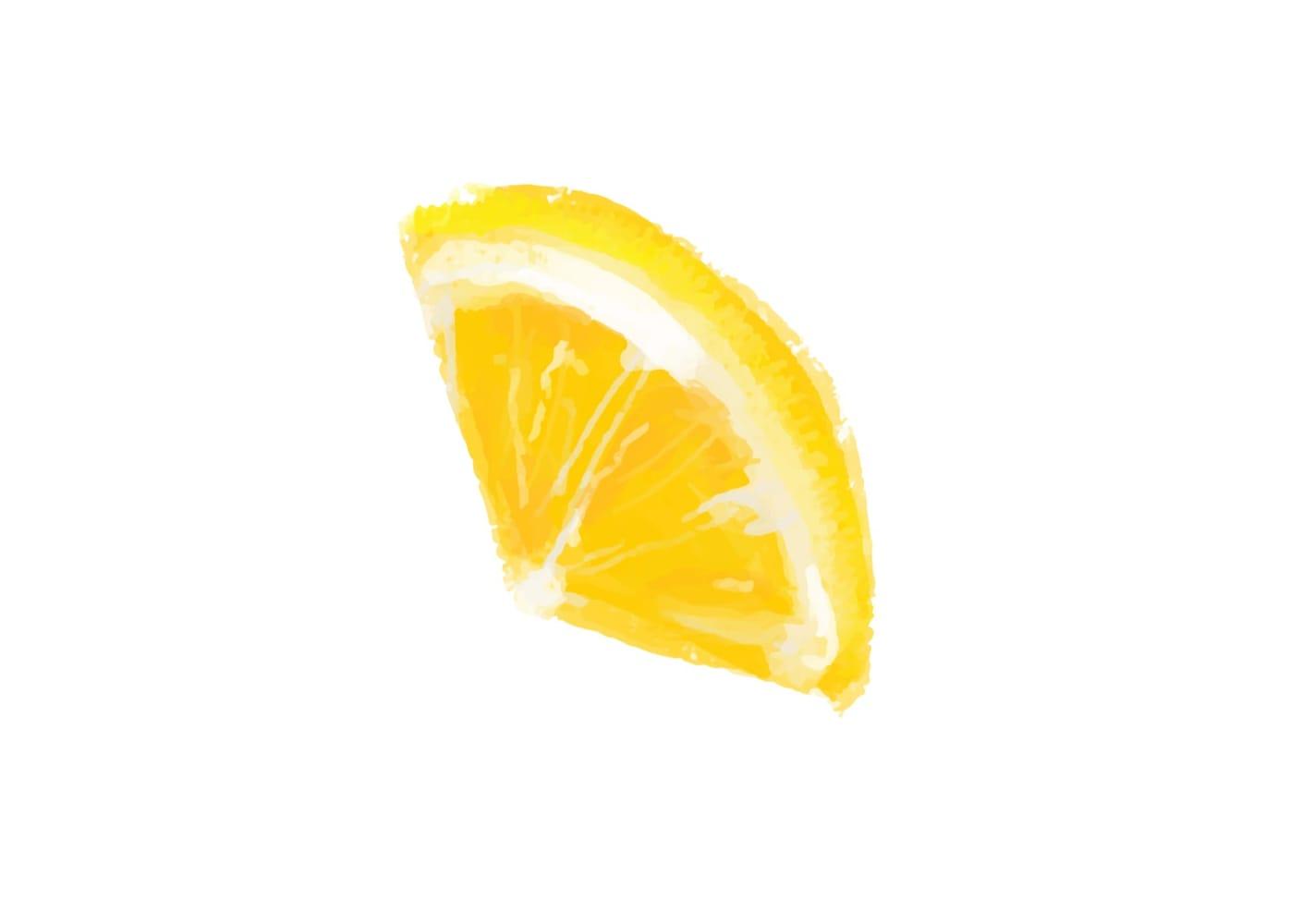 手書き オレンジ 1つ イラスト 無料2