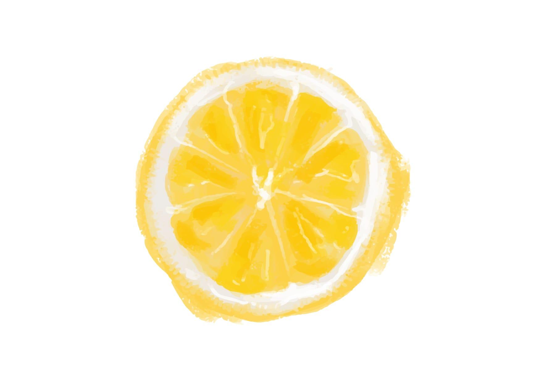 手書きイラスト無料|手書き オレンジ 1つ3