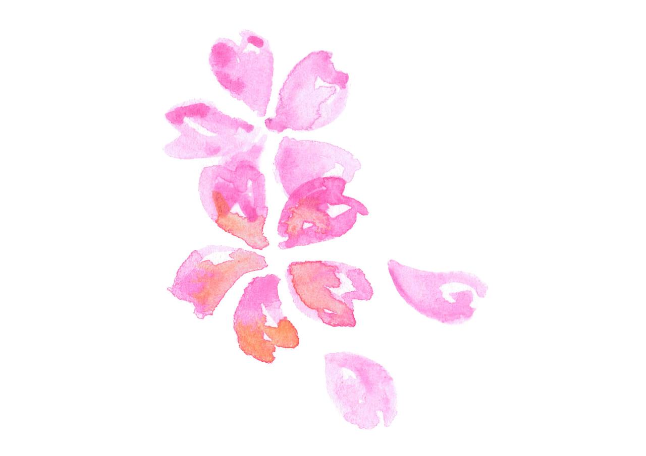 可愛いイラスト無料|水彩 桜 花