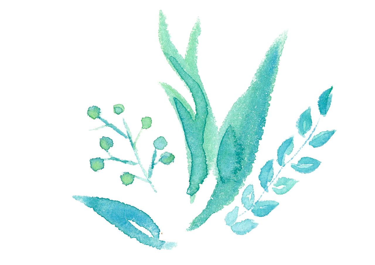 手書きイラスト無料|水彩 葉っぱ ポイント
