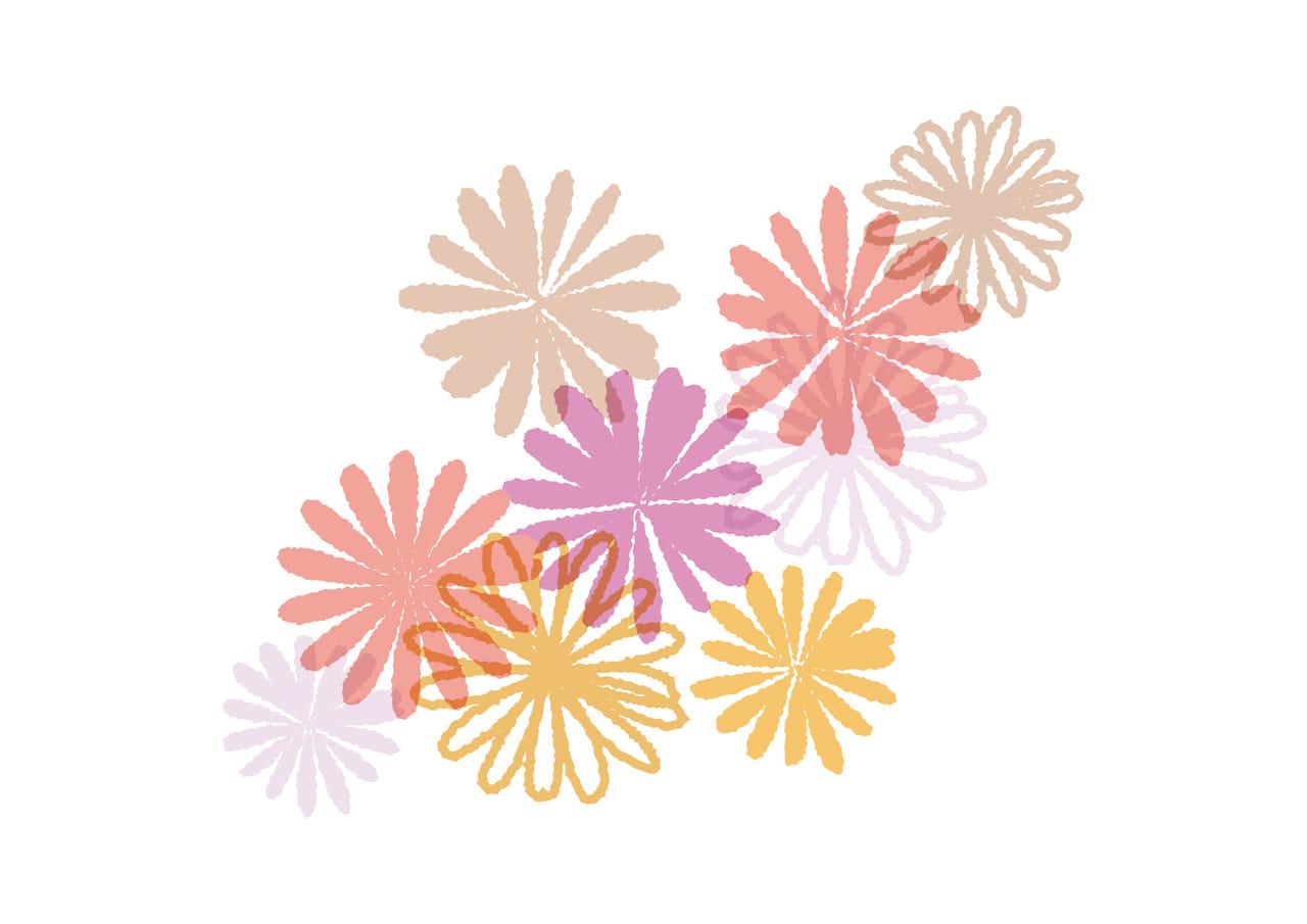 可愛いイラスト無料|マーガレットの花