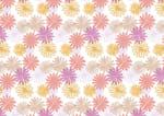かわいい マーガレットの花 背景 イラスト 無料