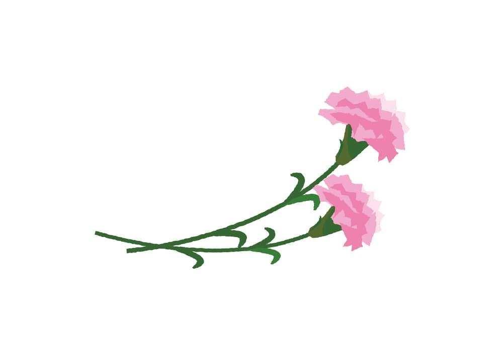 可愛いイラスト無料|カーネーション ピンク色