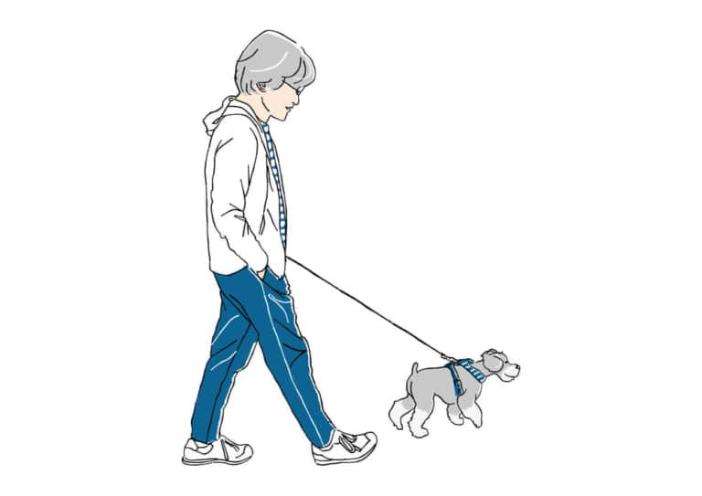 ロマンスグレーとシュナウザーの散歩 イラスト 無料