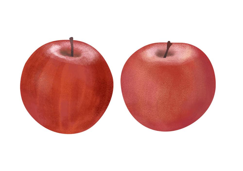 手書き りんご 2つ