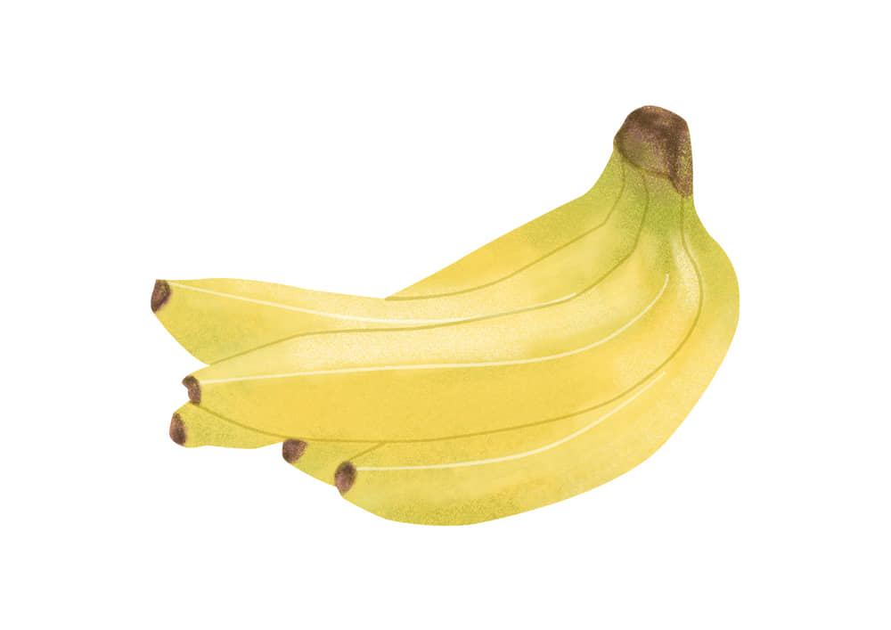 手書きイラスト無料|手書き バナナ