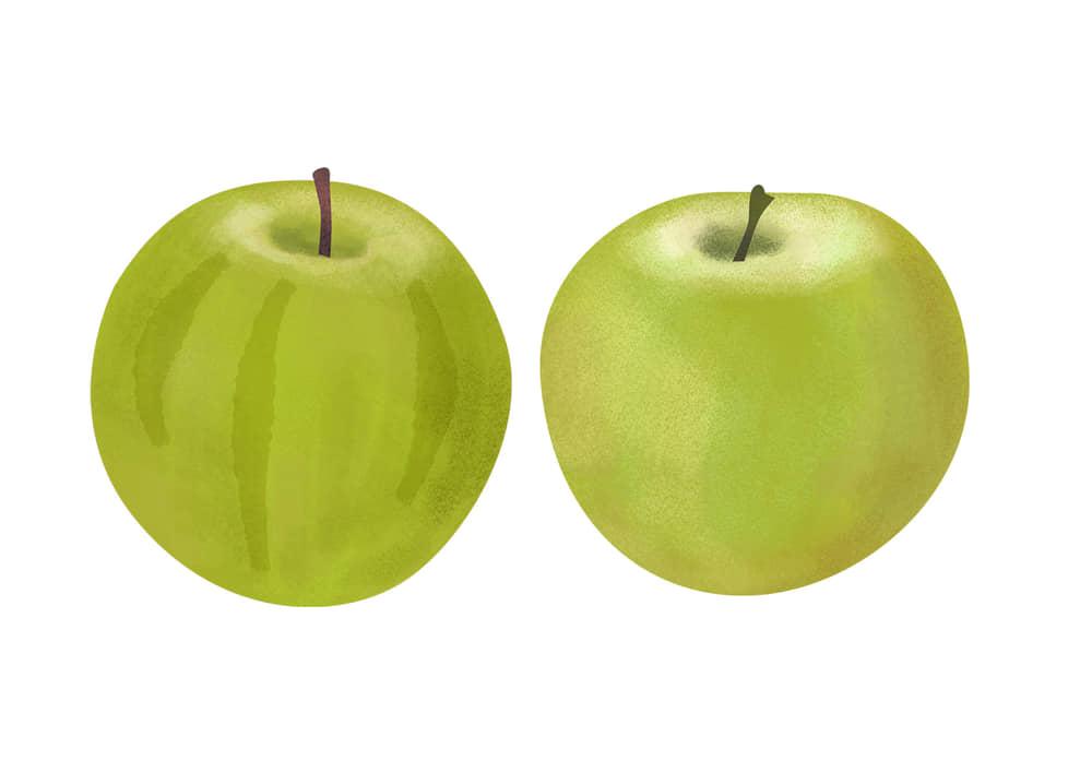 手書きイラスト無料|手書き 青りんご 2つ