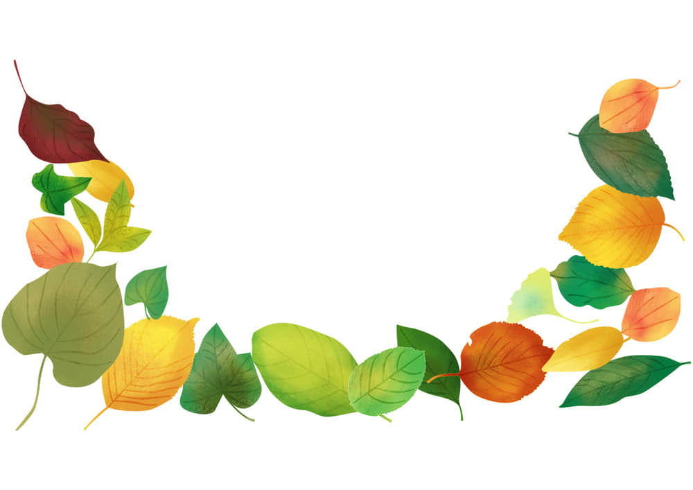 おしゃれなイラスト無料 手書き 様々な葉っぱ 背景 下部 秋 夏