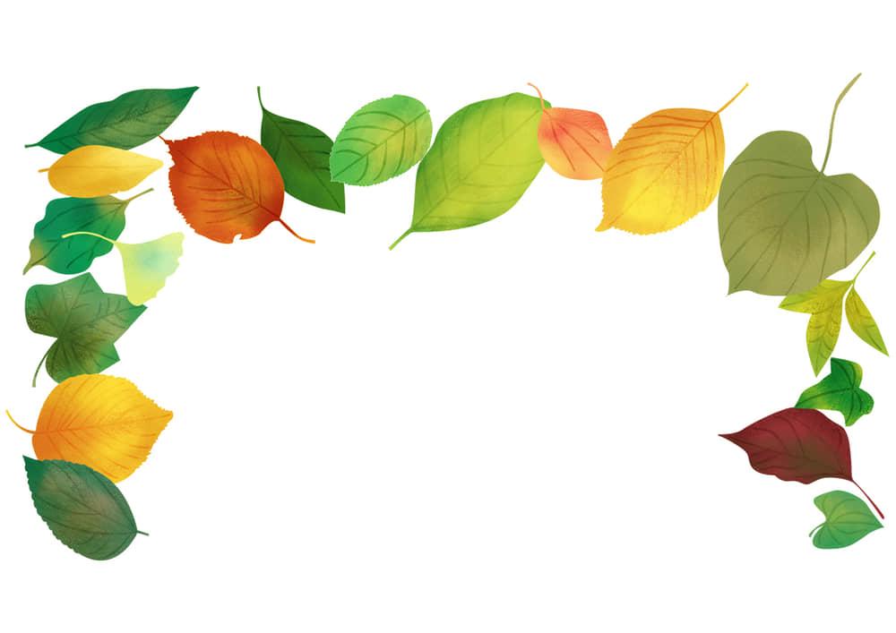 手書きイラスト無料|手書き 様々な葉っぱ 背景 上部 秋 夏