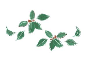 クリスマス ヒイラギ 手書き イラスト 無料
