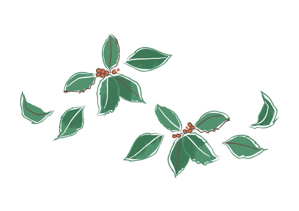 手書きイラスト無料|クリスマス ヒイラギ 手書き
