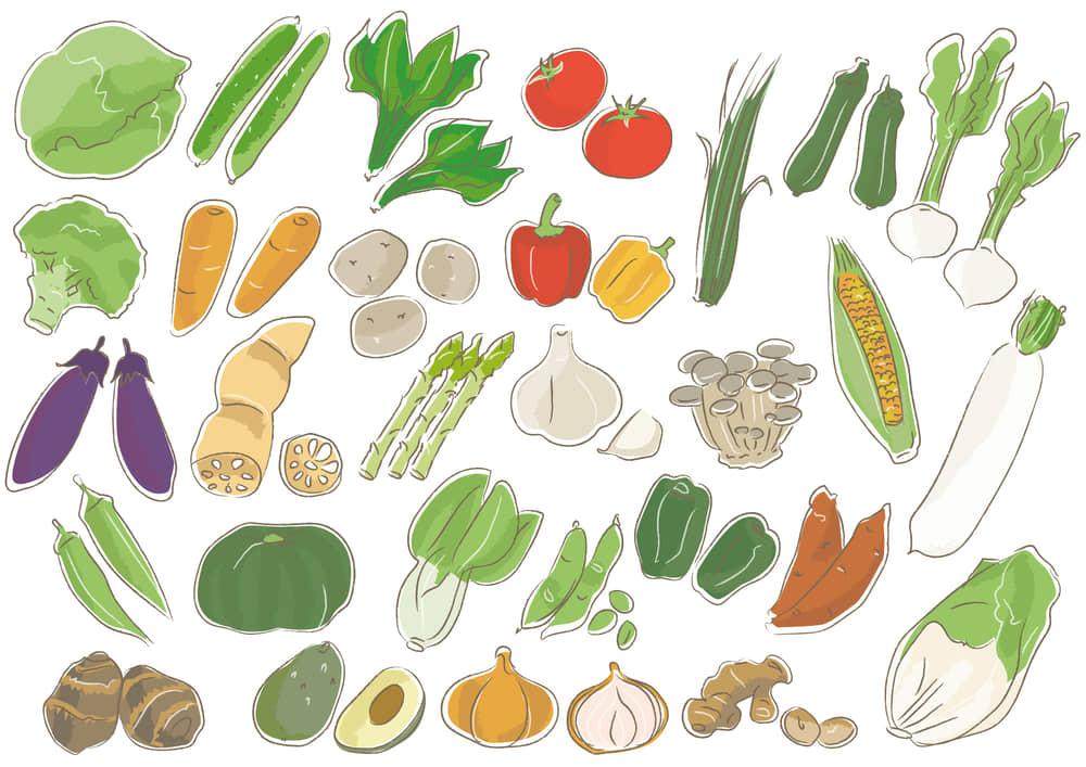 可愛いイラスト無料|野菜 セット
