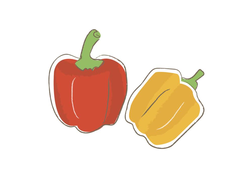 可愛いイラスト|野菜 パプリカ