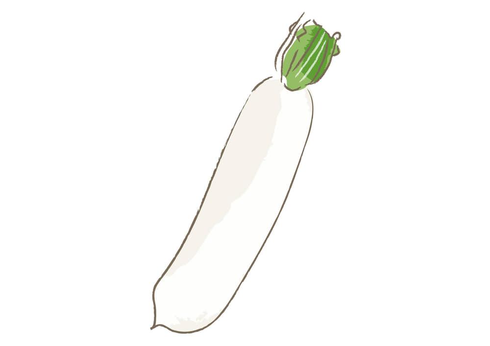 可愛いイラスト無料|野菜 大根