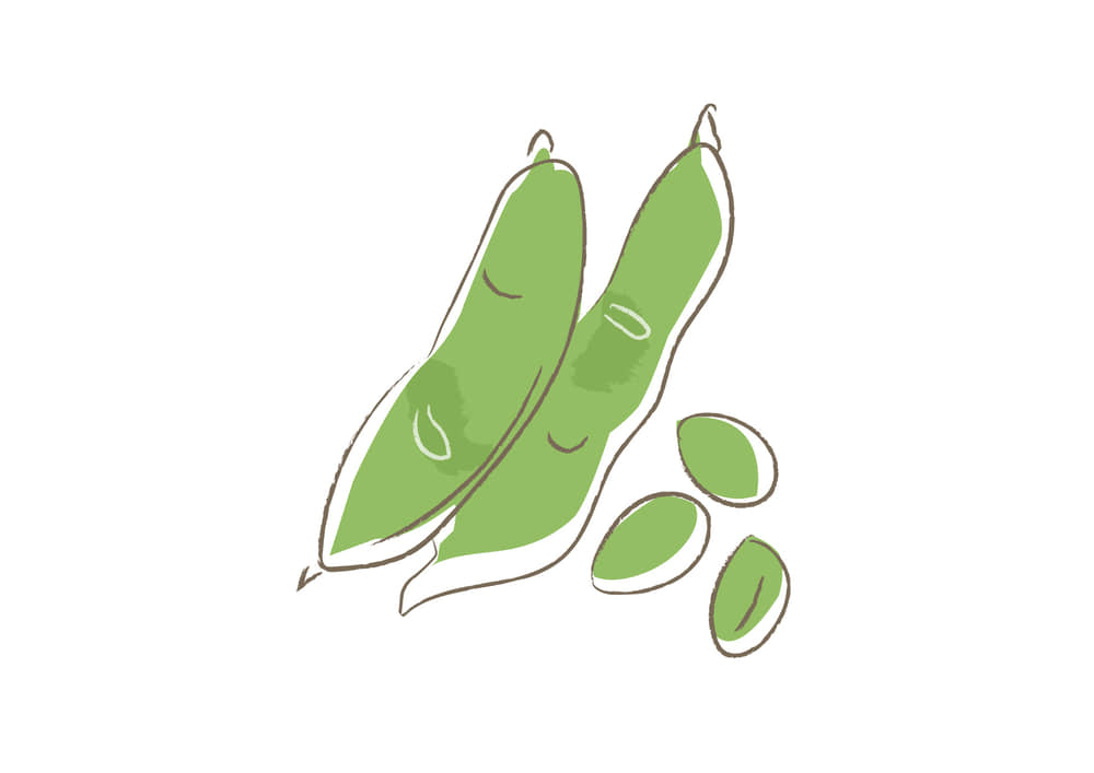 可愛いイラスト|野菜 そら豆