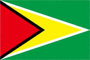 国旗 イラスト 無料|ガイアナ共和国の国旗