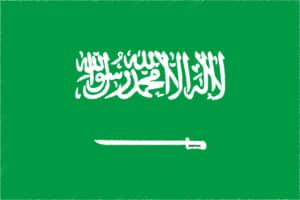 国旗 イラスト 無料|サウジアラビア王国の国旗