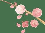 節分 イラスト 無料|手書きの梅の花