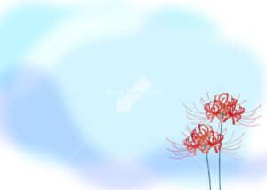 可愛いイラスト|彼岸花 青色 背景