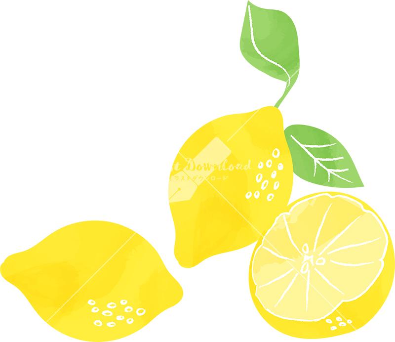 イラストデータ販売|レモン 手書き