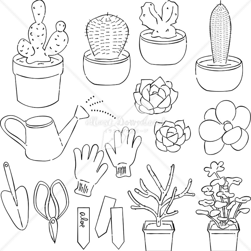 イラストデータ販売|多肉植物とガーデニング あしらい ペン画 手書き イラストデータ