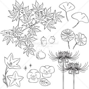 イラストデータ販売|秋 紅葉 イチョウ 花 あしらい ペン画 手書き イラストデータ