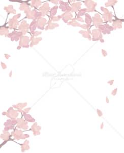 イラストデータ販売|桜 フレーム 透明 満開 シンプル イラスト イラストデータ