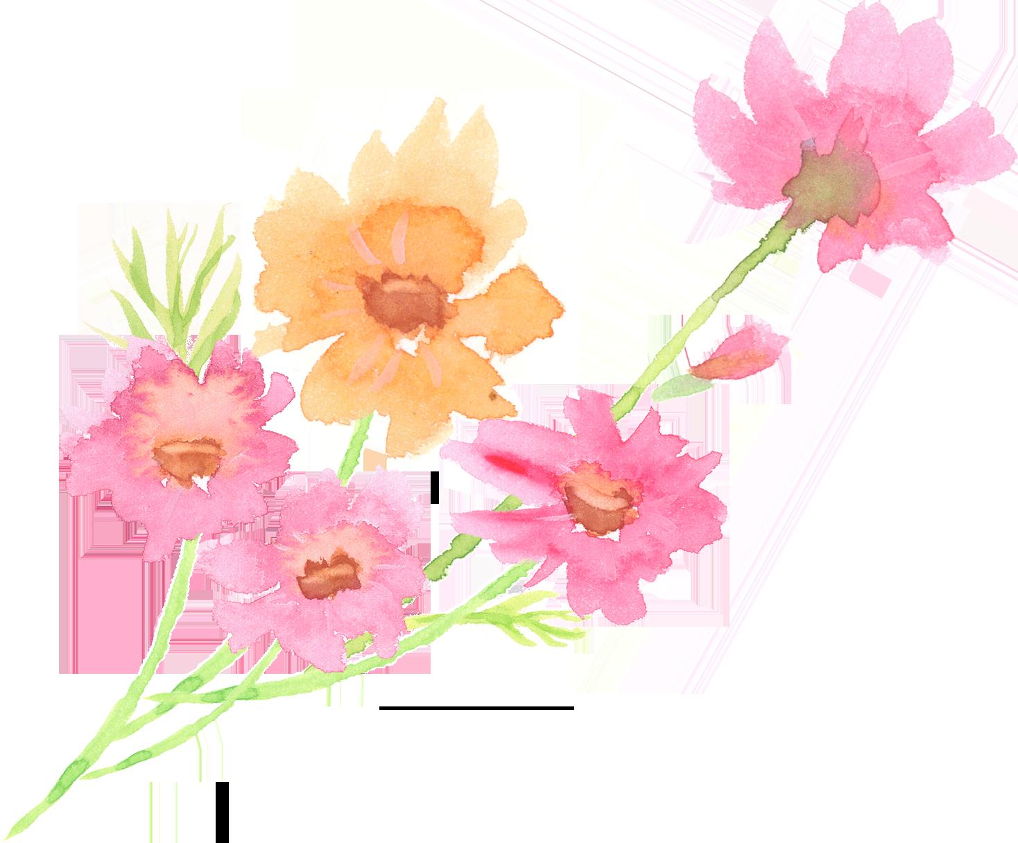 水彩 コスモス 花 束 イラスト 無料 | イラストダウンロード