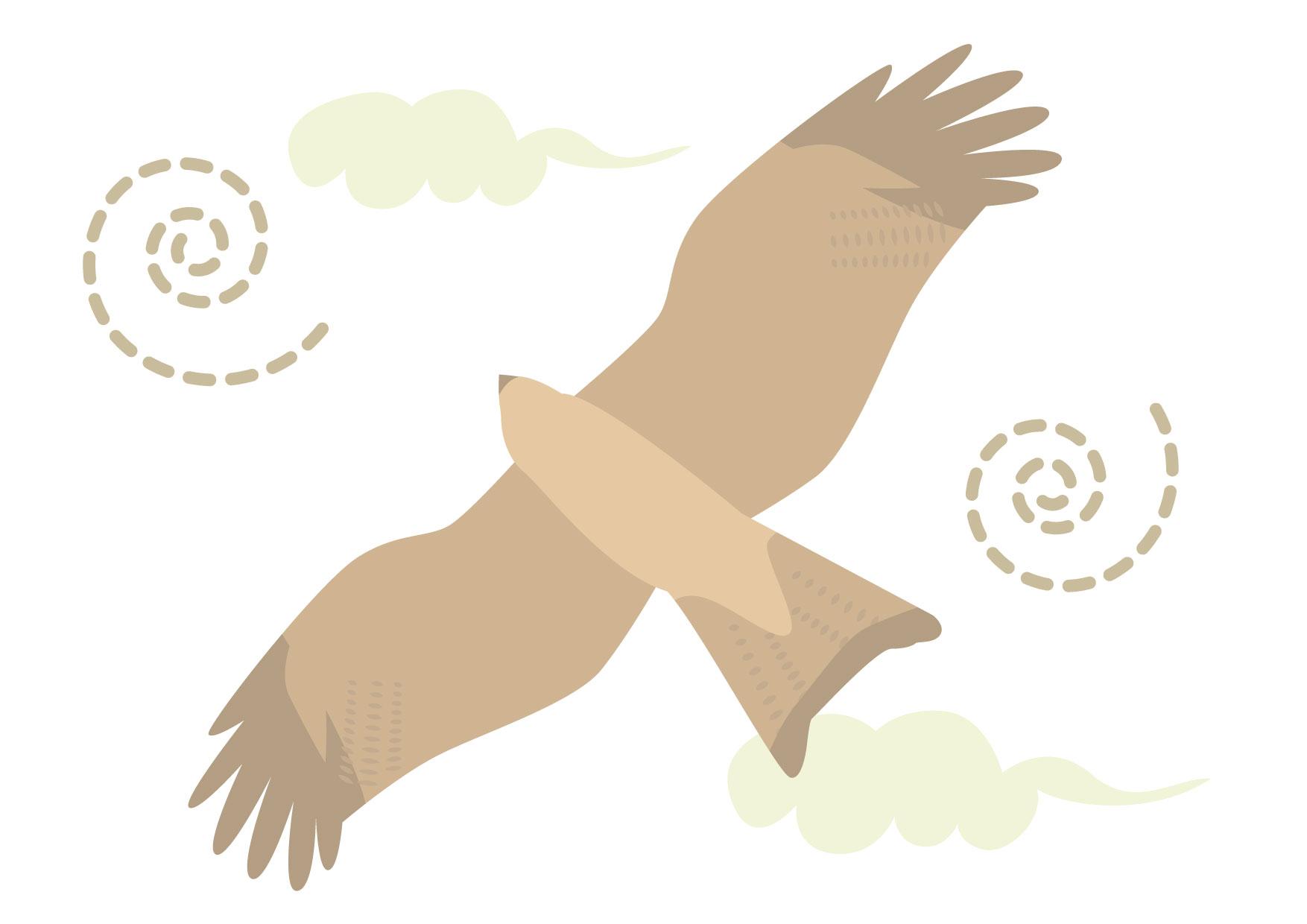 可愛いイラスト無料|鷹 風 − free illustration Hawk wind