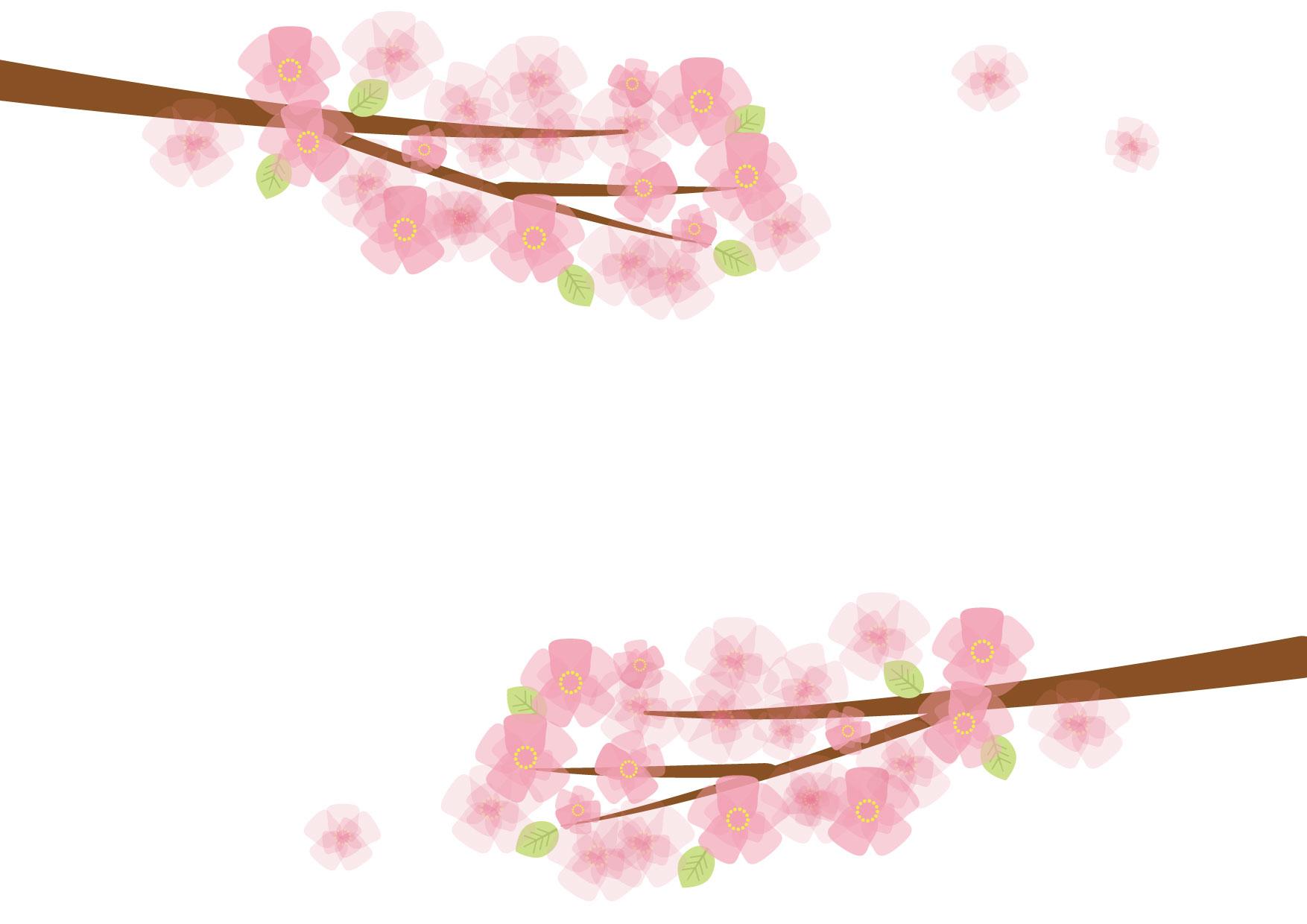 可愛いイラスト無料|桜 枝 − free illustration Sakura branch