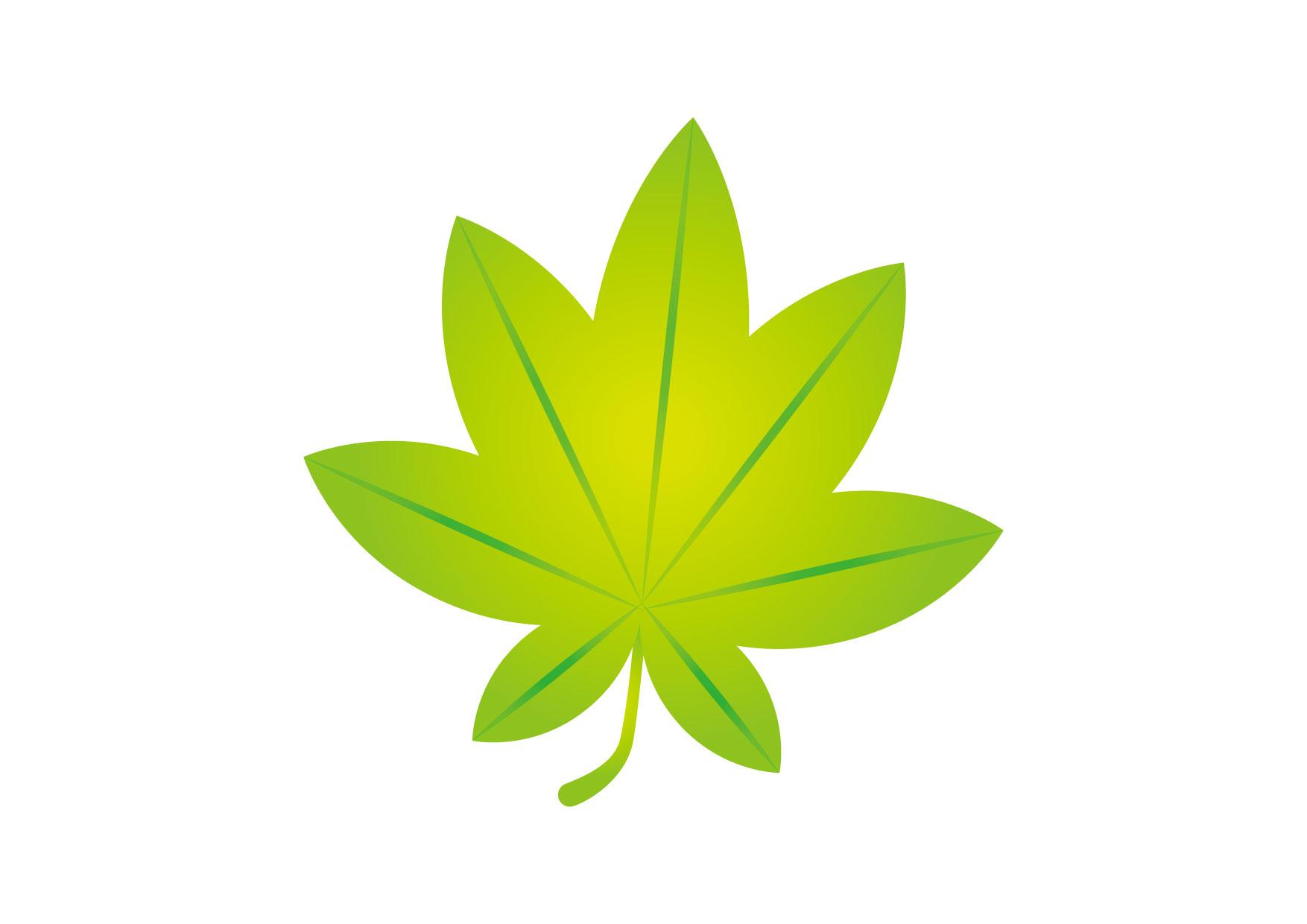 可愛いイラスト無料 もみじ 緑 − free illustration Maple green