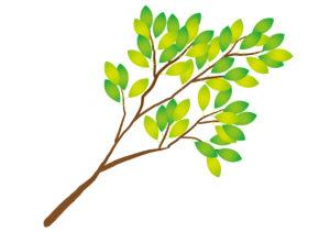 樹の枝 緑 イラスト 無料