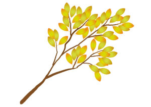 木の枝 黄色 イラスト 無料