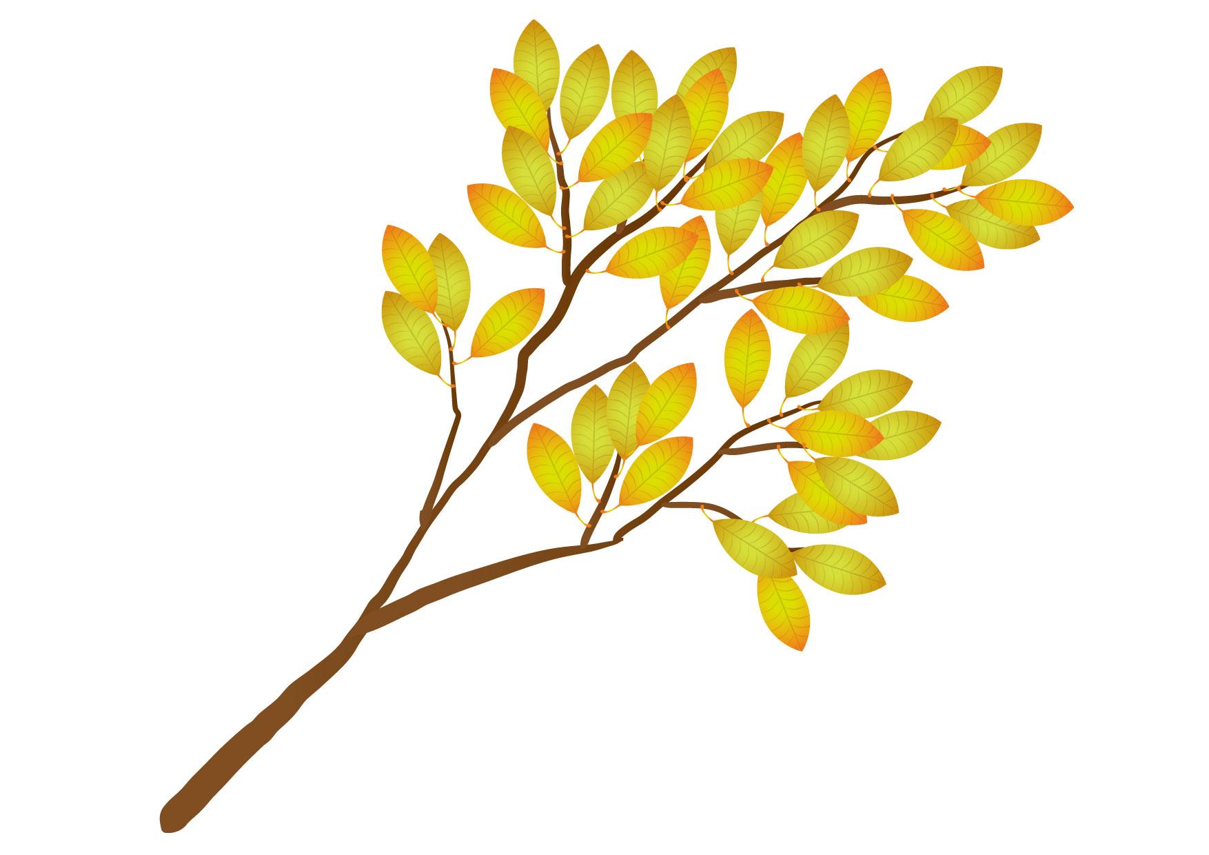 可愛いイラスト無料|木の枝 黄色 − free illustration Tree branch yellow