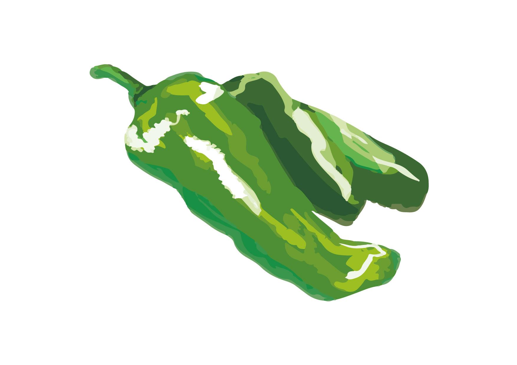 可愛いイラスト無料|ししとう 手書き − free illustration Chili pepper handwriting